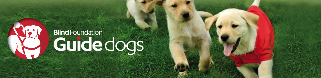 three puppies playing in the grass