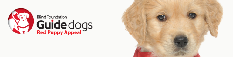 Blind Foundation guide dogs Red Puppy Appeal