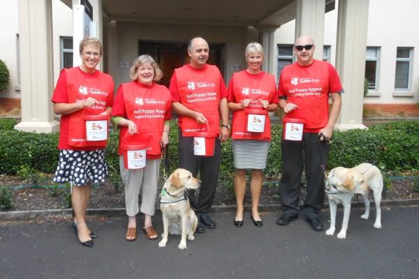 A group of volunteer street collectors
