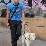 Ten things to know about Guide Dogs