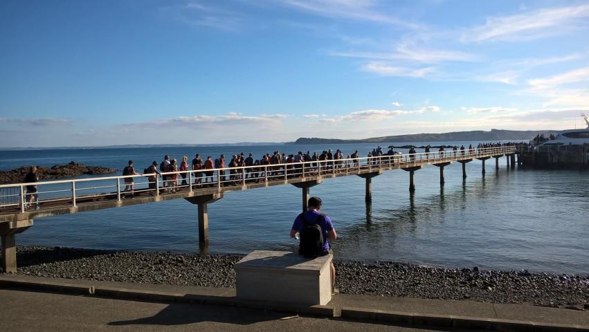 Participants make their way to Tiritiri Maitangi Island