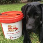 Collecting for Red Puppy Appeal
