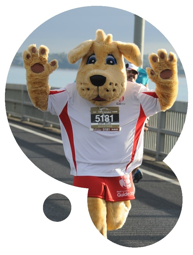 Marvel the guide dog mascot running Auckland Marathon
