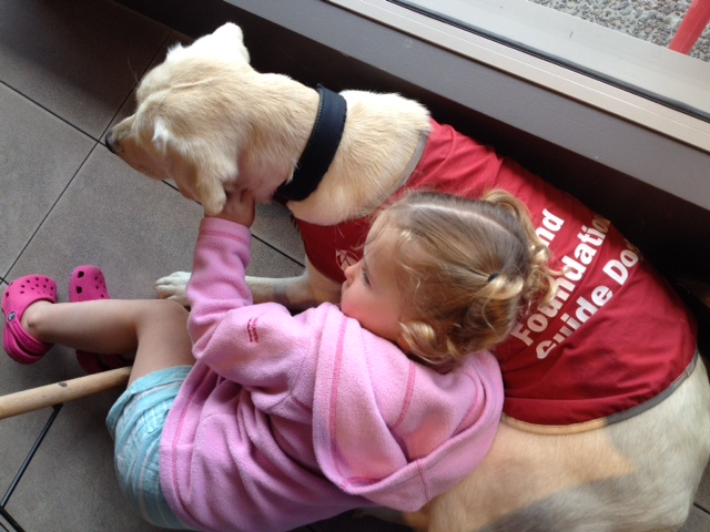 Little girl cuddling a guide dog puppy