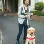 Meet Yulie Jung