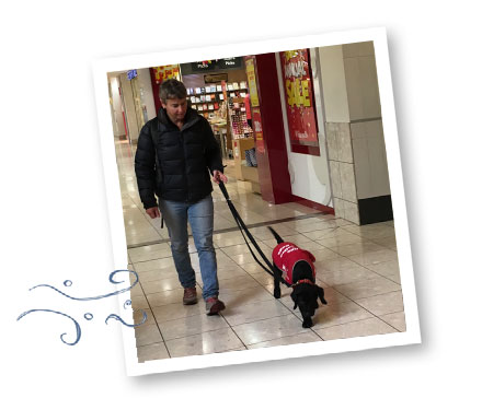 Harris walking in the mall