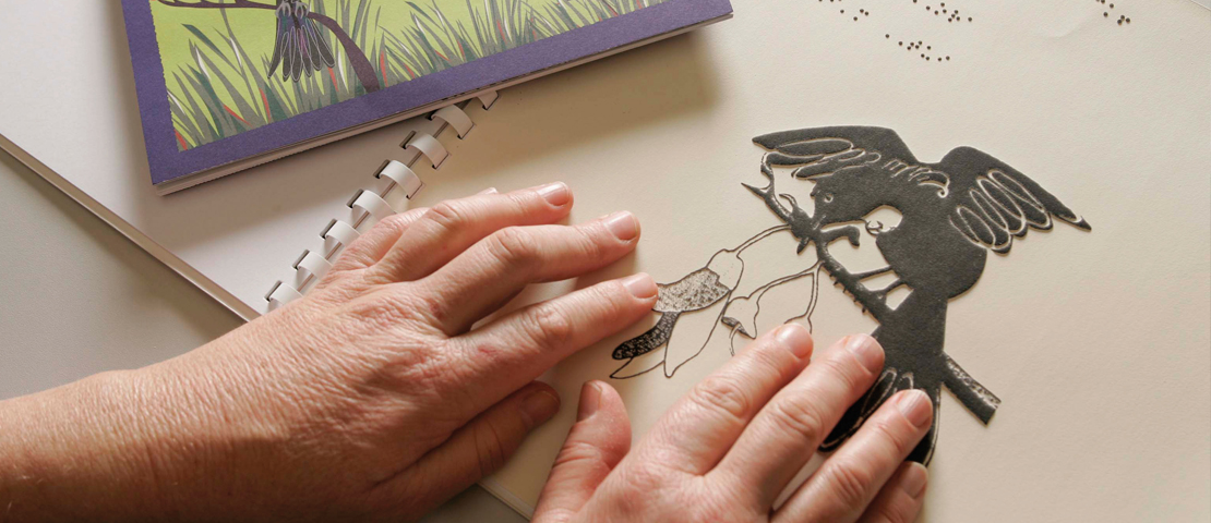 Close up of hands touching a tactile bird picture