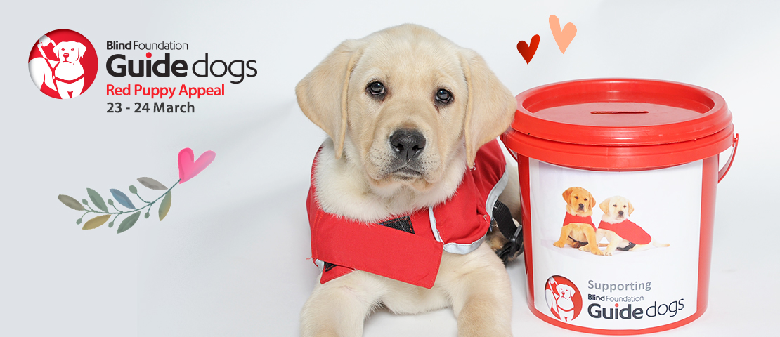 Red Puppy Appeal 2018 banner with Yates the guide dog puppy