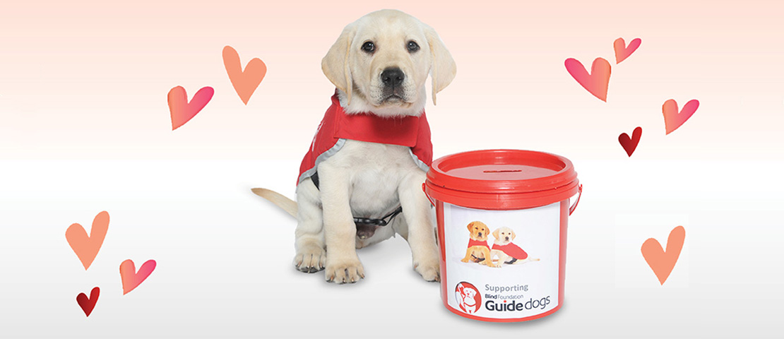 A guide dog puppy sit with a red bucket, some love hearts around them
