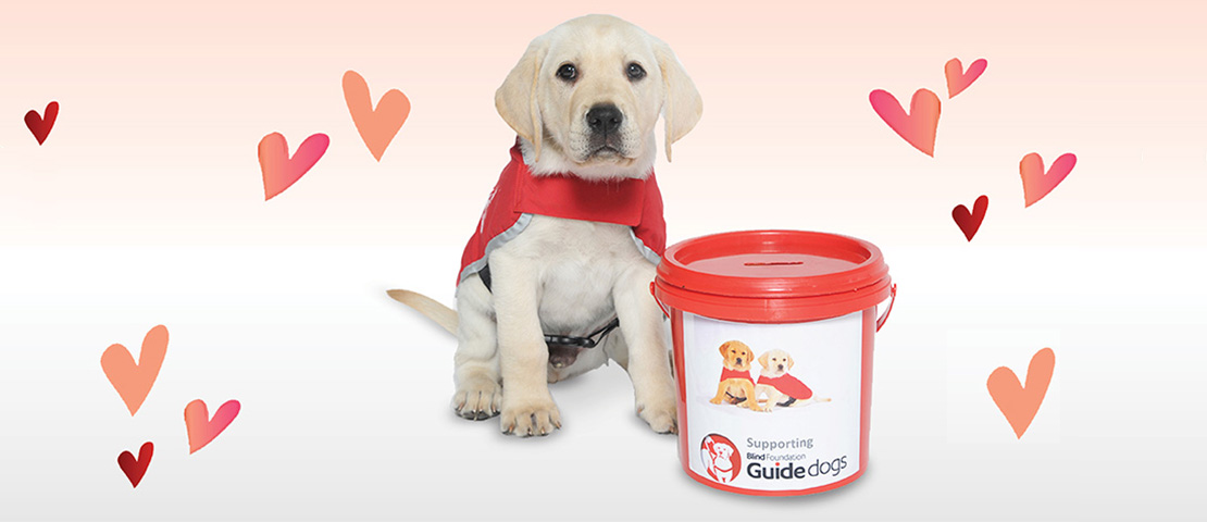 Red Puppy Appeal March 2019