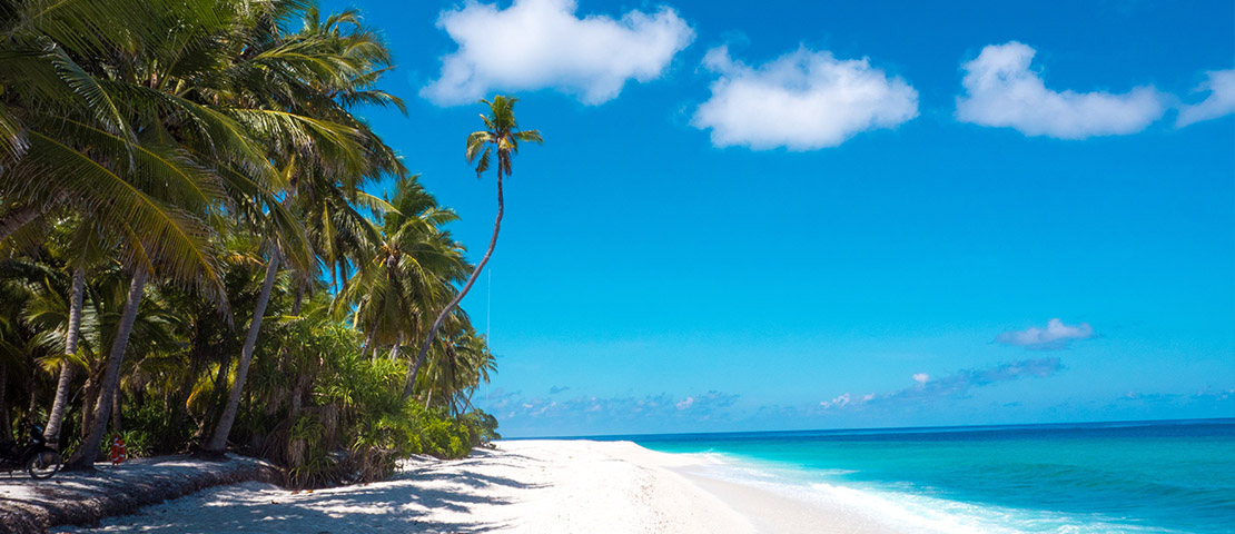 Tropical beach with white sand, palm trees, and clear blue water.