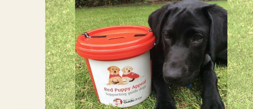 Brooke with a Red Puppy Appeal collection bucket