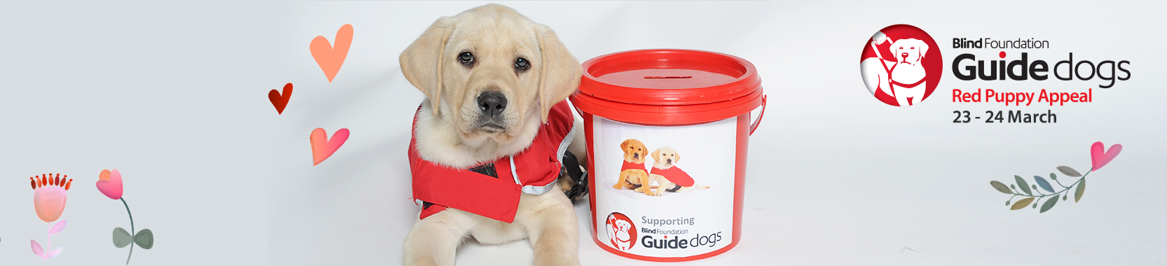 Guide dog puppy Yates sitting next to a collection bucket