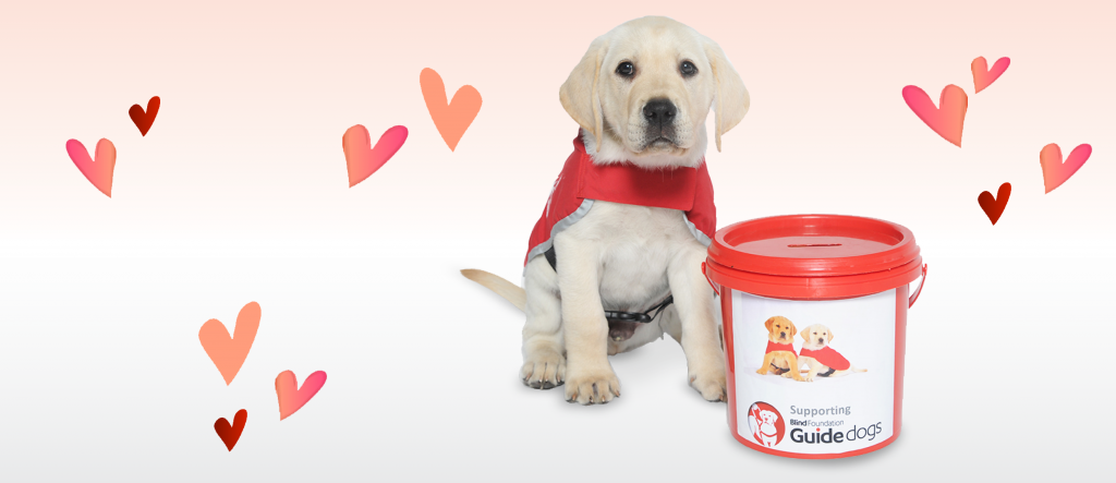 Red Puppy appeal 2019 banner
