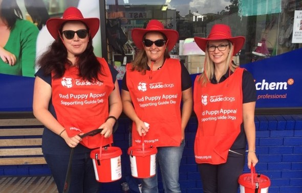Volunteers from Hill's collecting during Red Puppy Appeal 2018