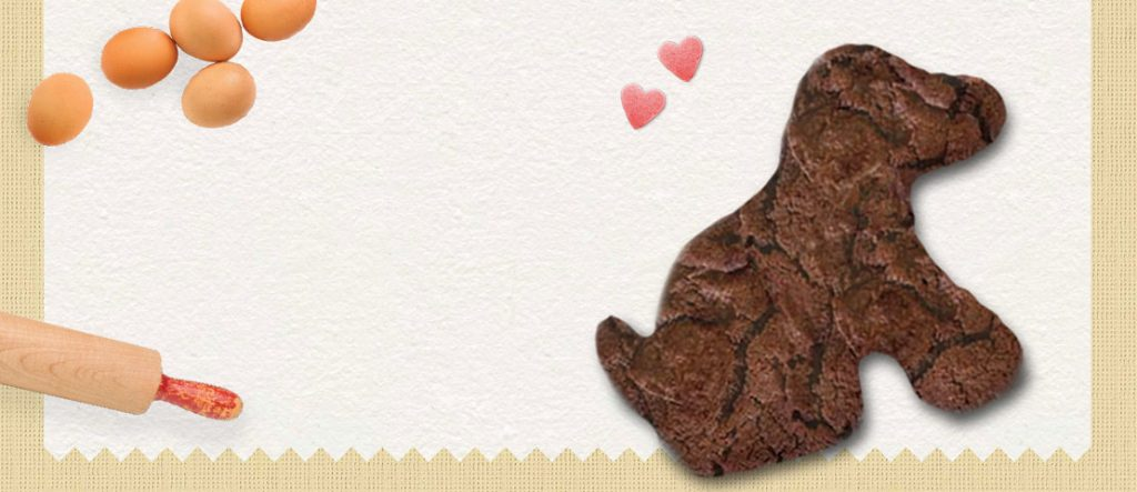 Bikkie Day banner featuring a chocolate lab biscuit