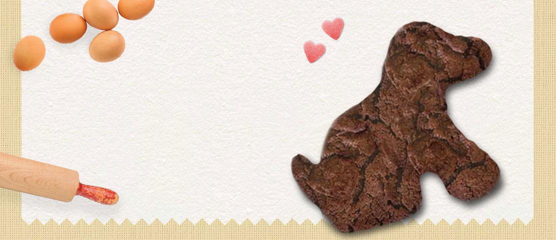 Bikkie Day banner featuring a chocolate lab biscuit