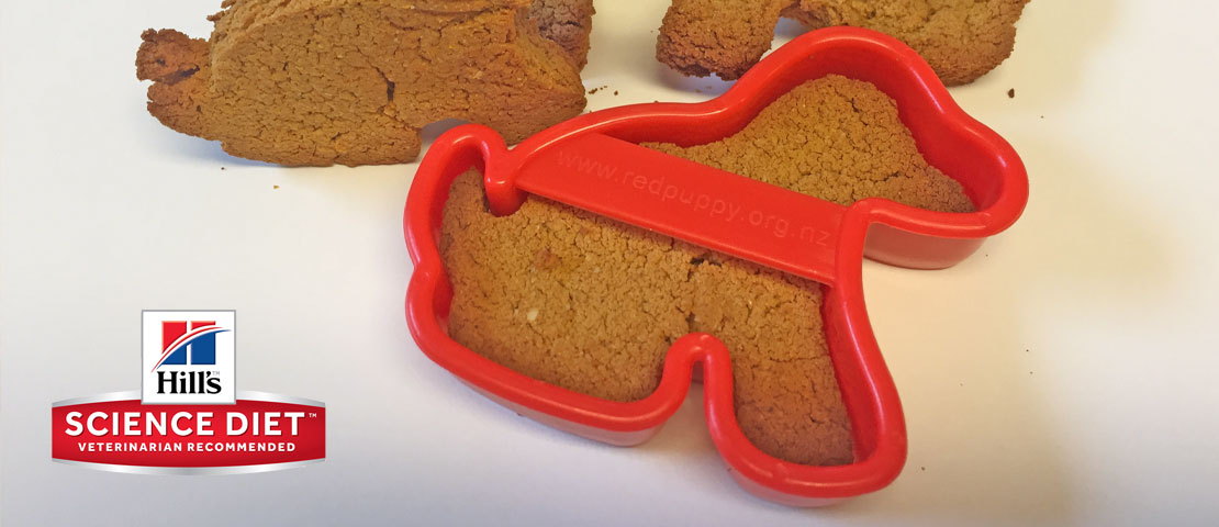 Dog biscuits in a red puppy shaped cookie cutter
