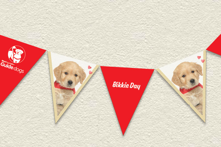 Bunting with pictures of a guide dog puppy
